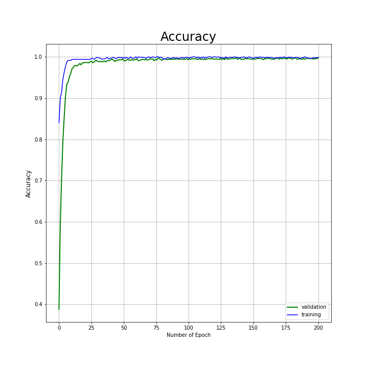 ML Train and Validation loss curves